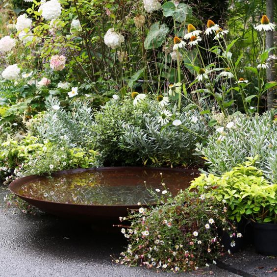 Steel Bowl, Water Feature, Garden, Flowers