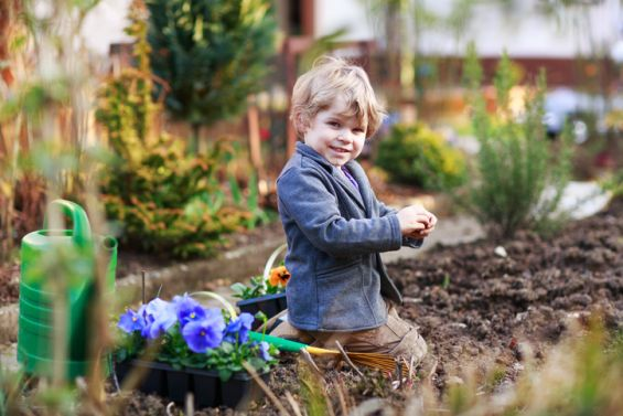 Gardening, Child, Boy, Fruit, Vegetable, Garden